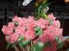 Fuentes - Flores